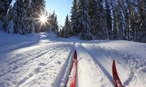 1437_2198_West_Yellowstone_Cross_Country_Skiing_md